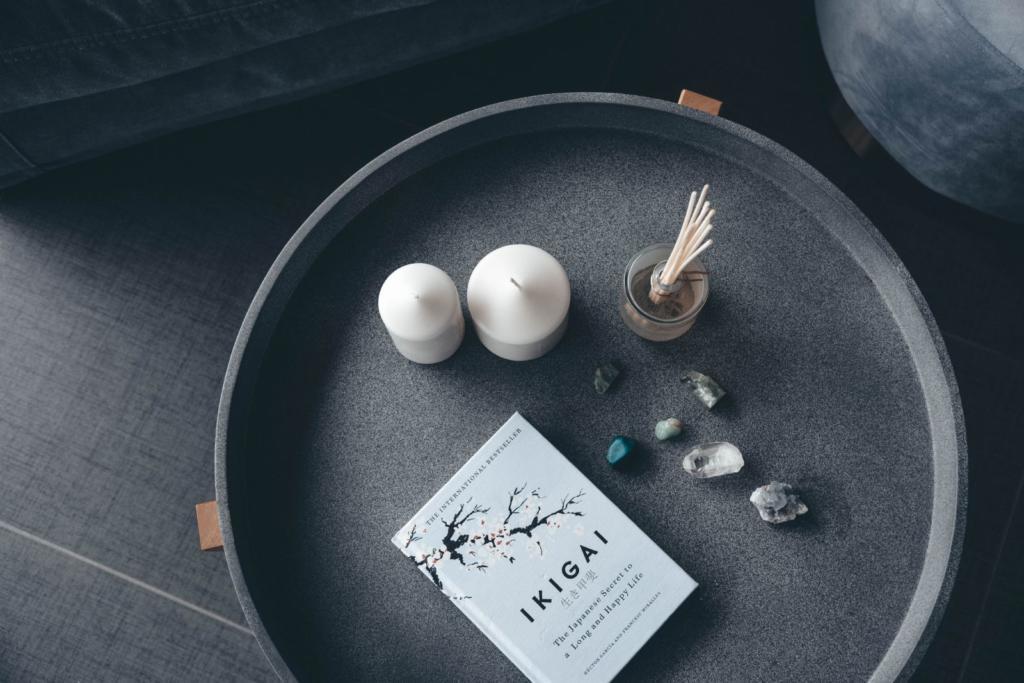 libro sull'ikigai