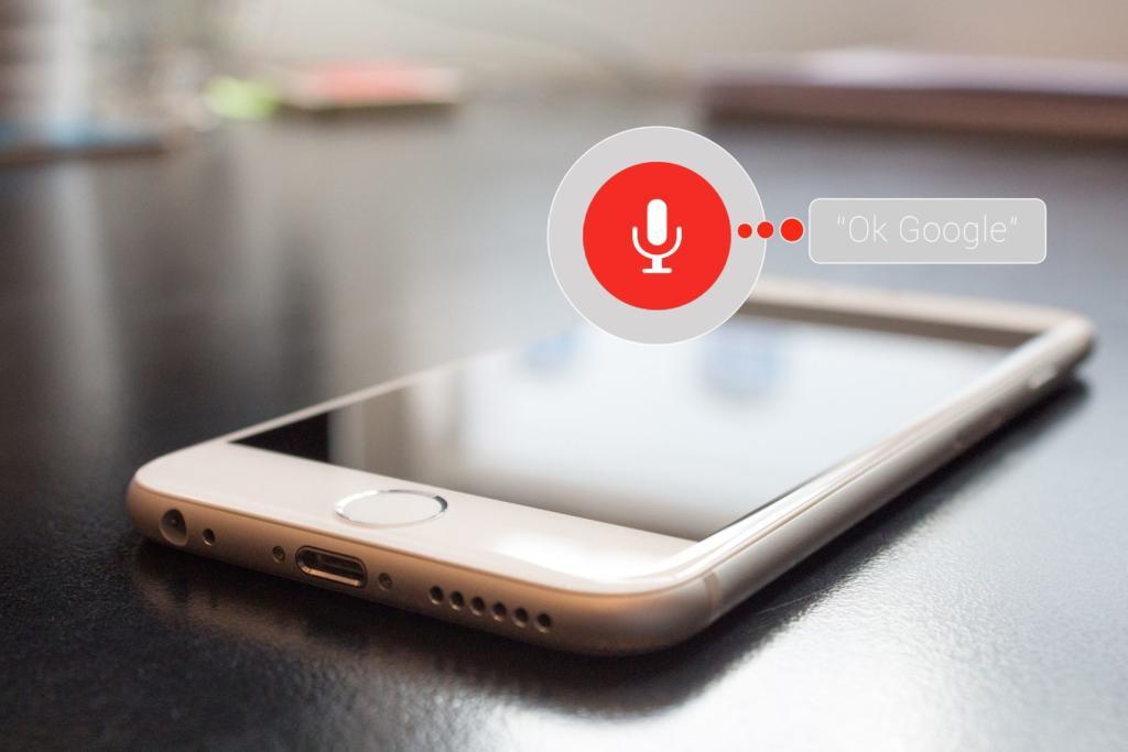 voice control di google