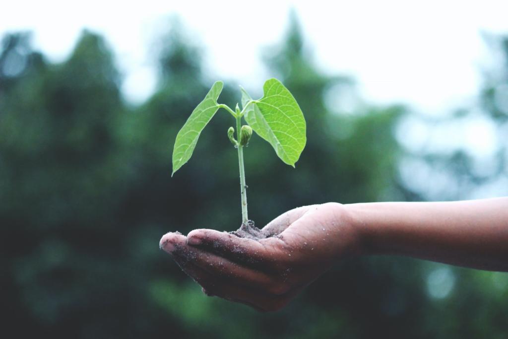 Crescita personale, come sviluppare le potenzialità