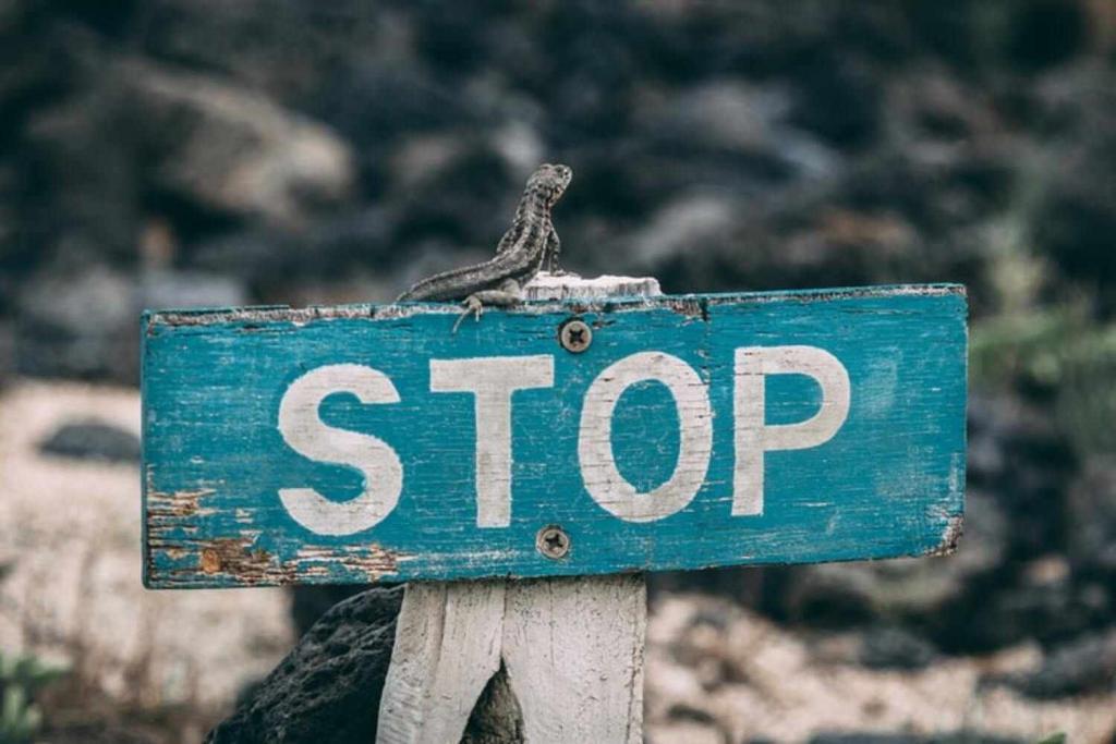 Come trovare la propria strada imparando a fermarsi