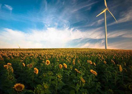 5 Startup Green in Italia che ti aiuteranno a sostenere l'ambiente